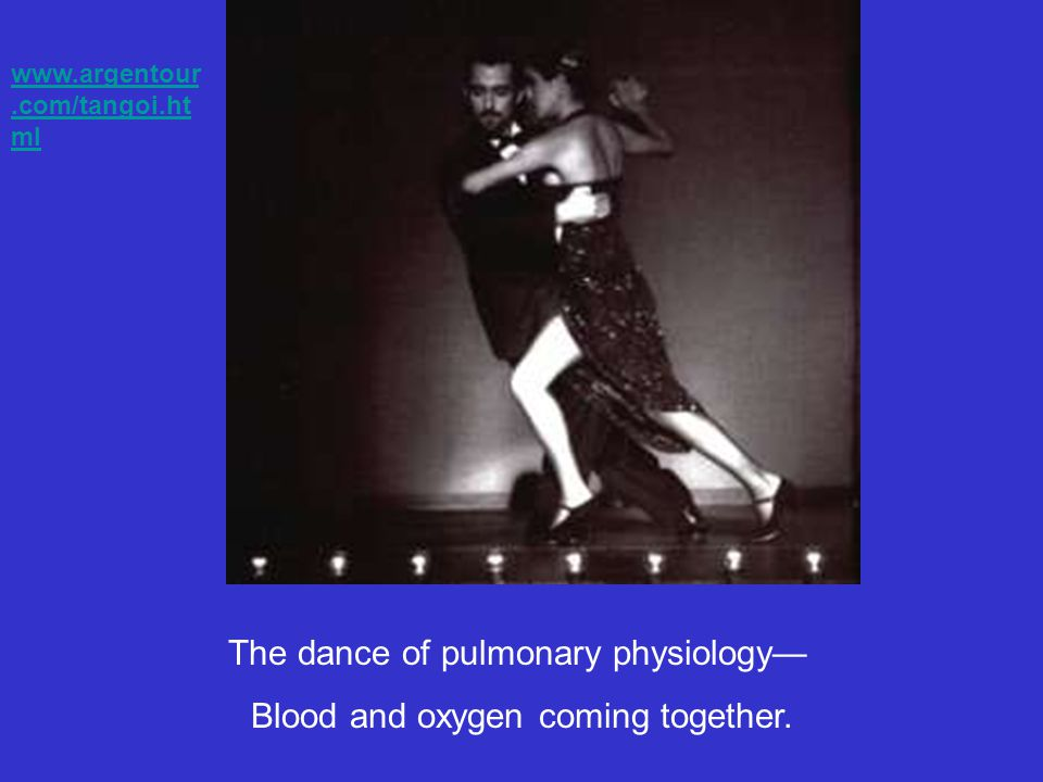 The dance of pulmonary physiology— Blood and oxygen coming together.