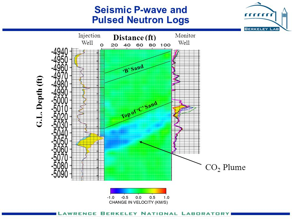 Seismic P-wave and Pulsed Neutron Logs