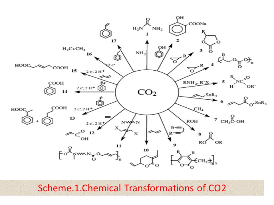 Scheme.1.Chemical Transformations of CO2