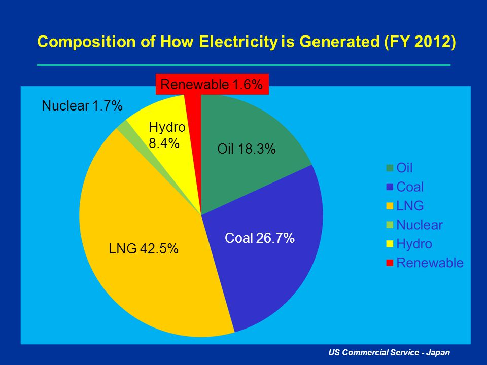 Composition of How Electricity is Generated (FY 2012)