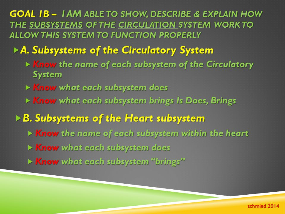 A. Subsystems of the Circulatory System