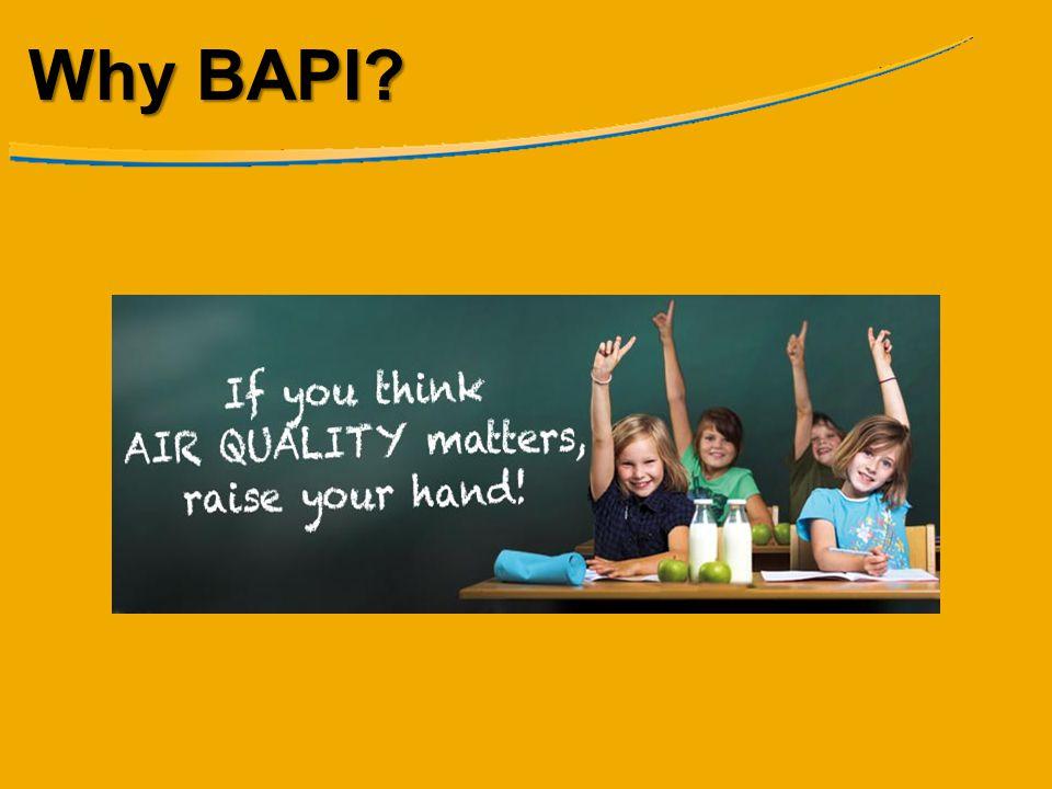 Why BAPI