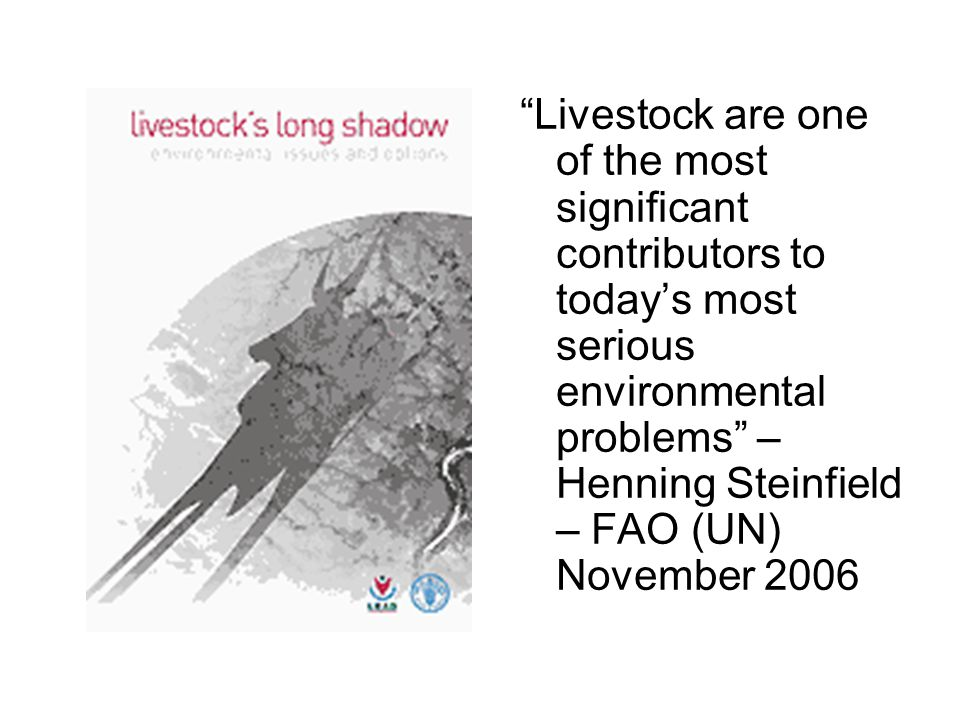 Livestock are one of the most significant contributors to today's most serious environmental problems – Henning Steinfield – FAO (UN) November 2006