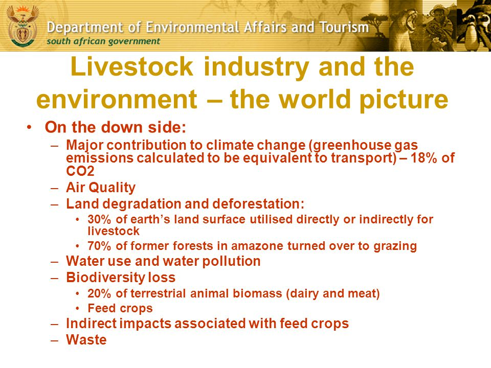 Livestock industry and the environment – the world picture