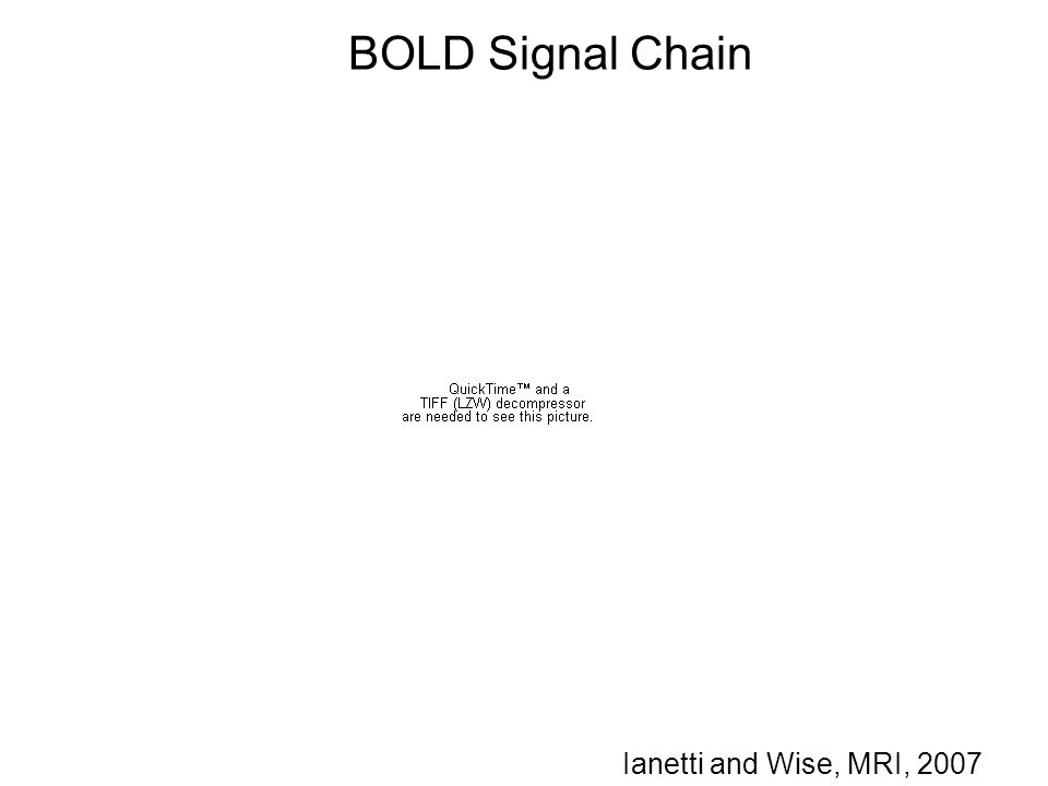 BOLD Signal Chain Ianetti and Wise, MRI, 2007