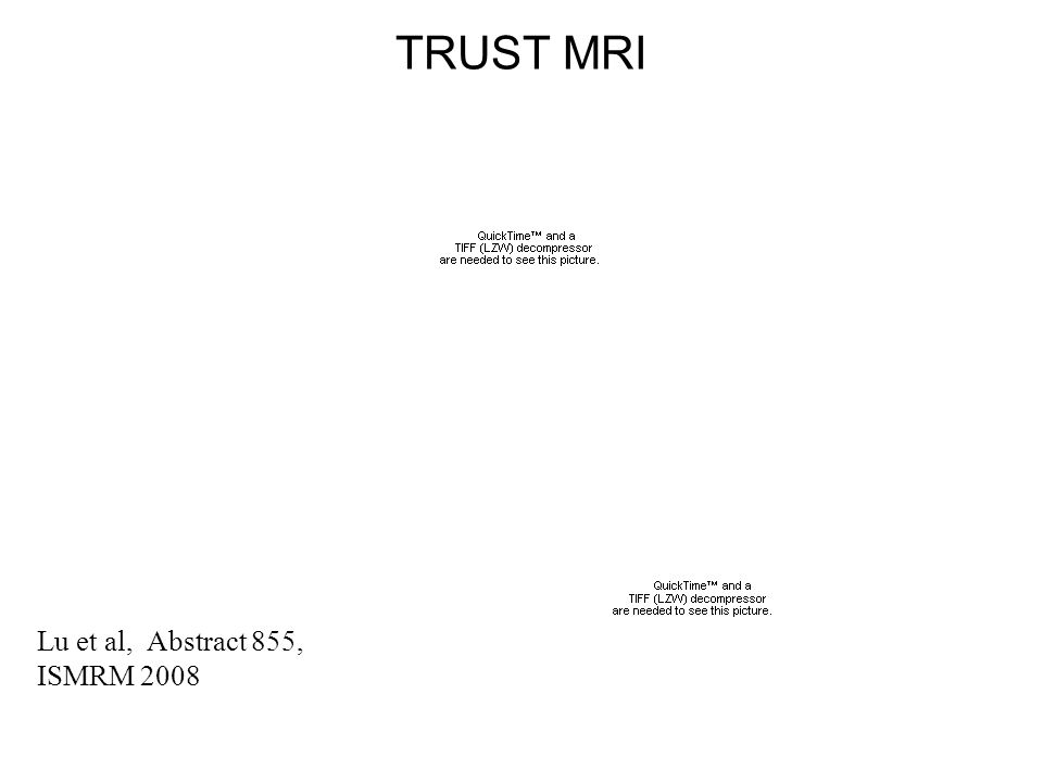 TRUST MRI Lu et al, Abstract 855, ISMRM 2008