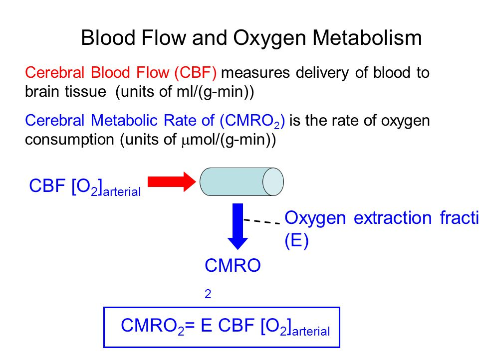 Blood Flow and Oxygen Metabolism