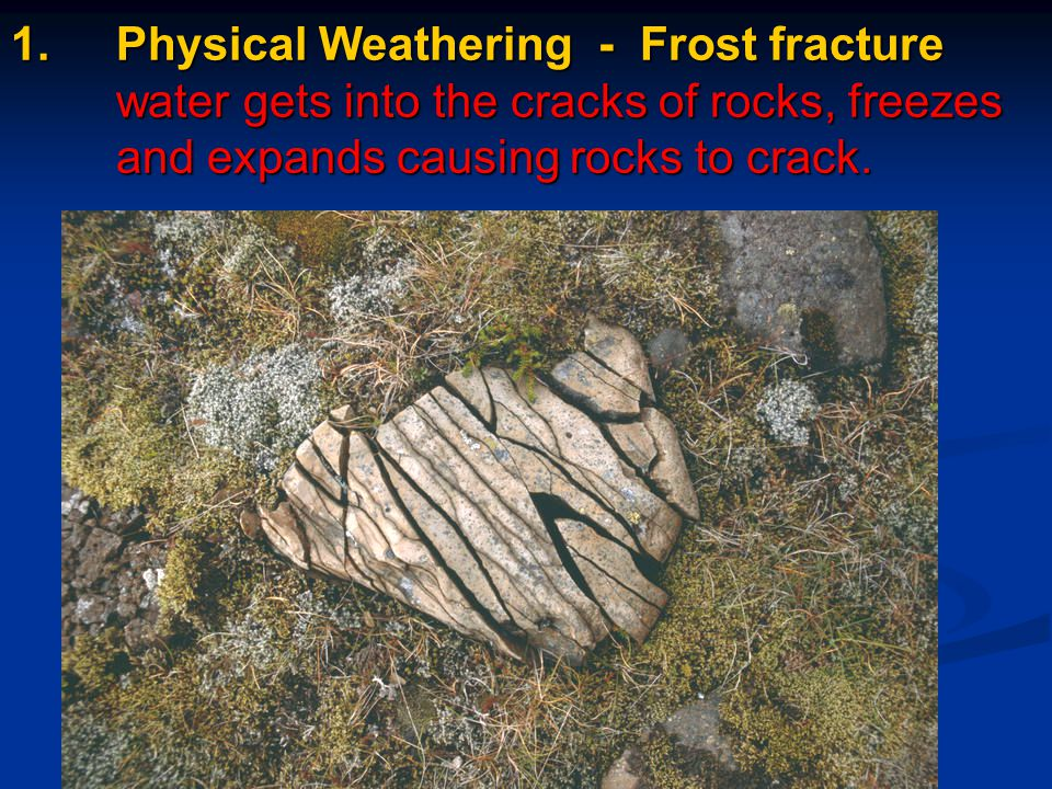 1. Physical Weathering - Frost fracture water gets into the cracks of rocks, freezes and expands causing rocks to crack.