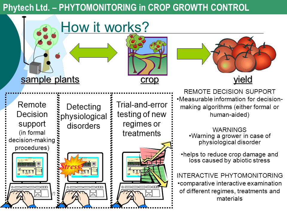 How it works Phytech Ltd. – PHYTOMONITORING in CROP GROWTH CONTROL