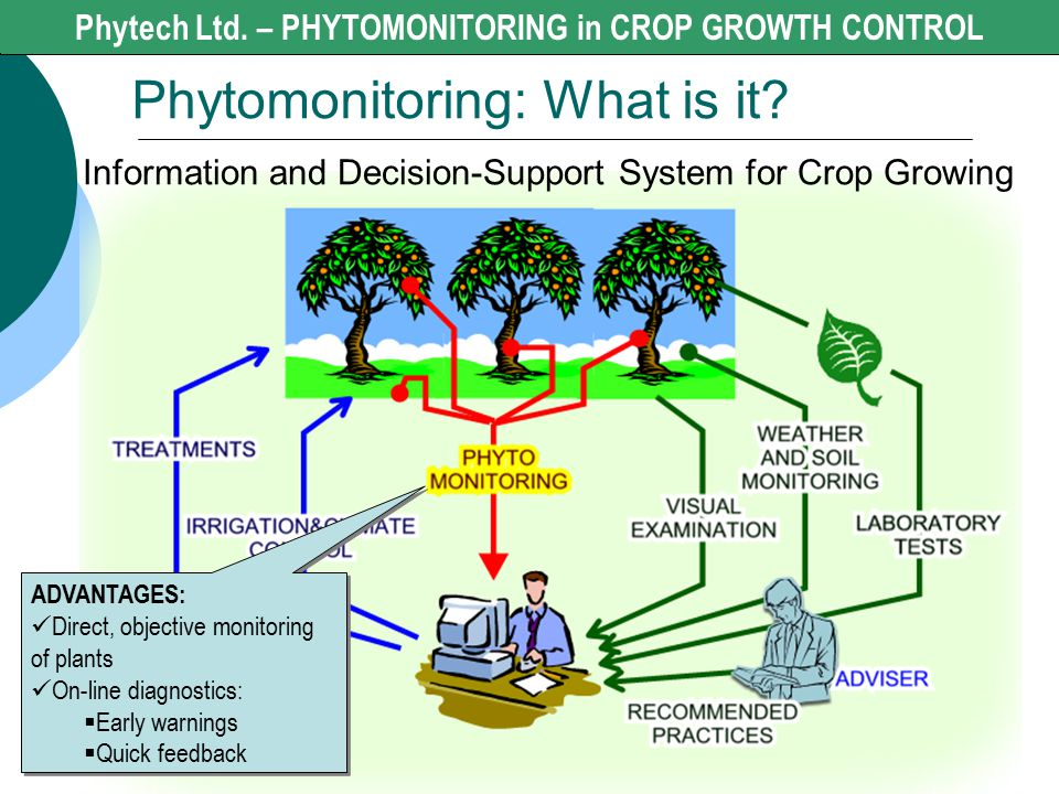Phytomonitoring: What is it