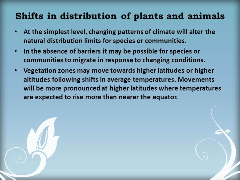 Shifts in distribution of plants and animals