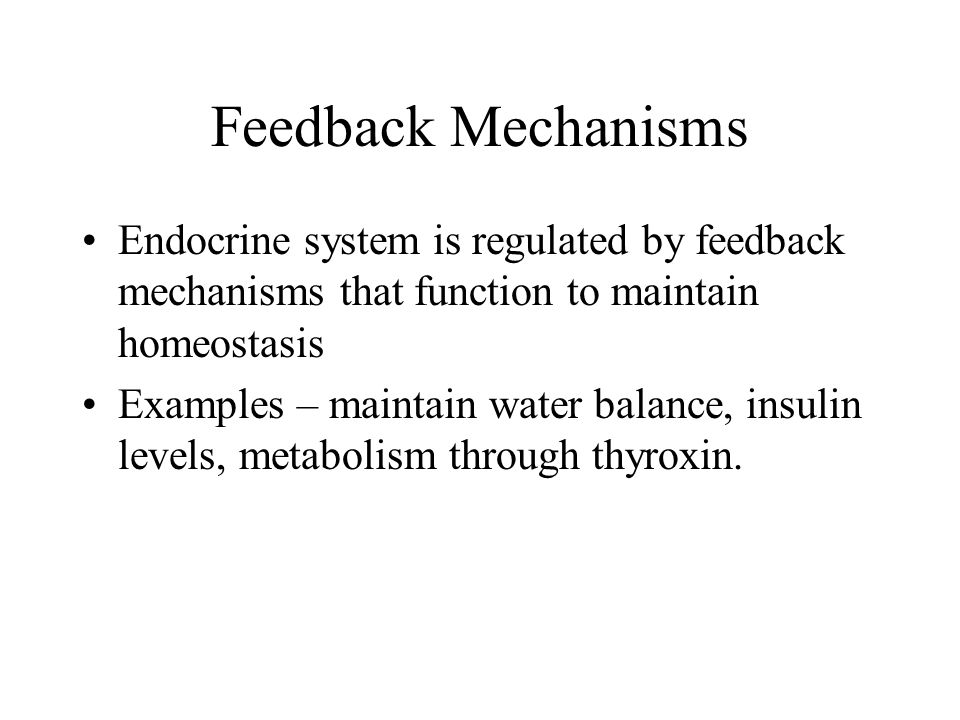 Feedback Mechanisms Endocrine system is regulated by feedback mechanisms that function to maintain homeostasis.
