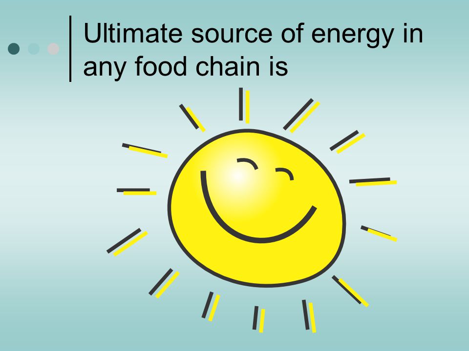 Ultimate source of energy in any food chain is