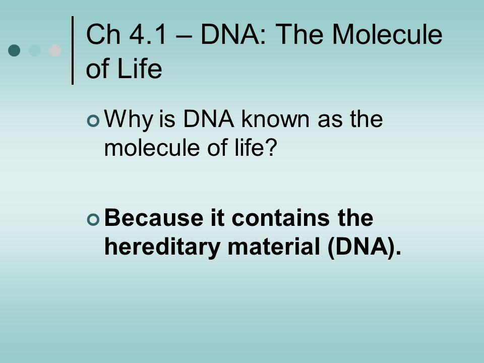 Ch 4.1 – DNA: The Molecule of Life