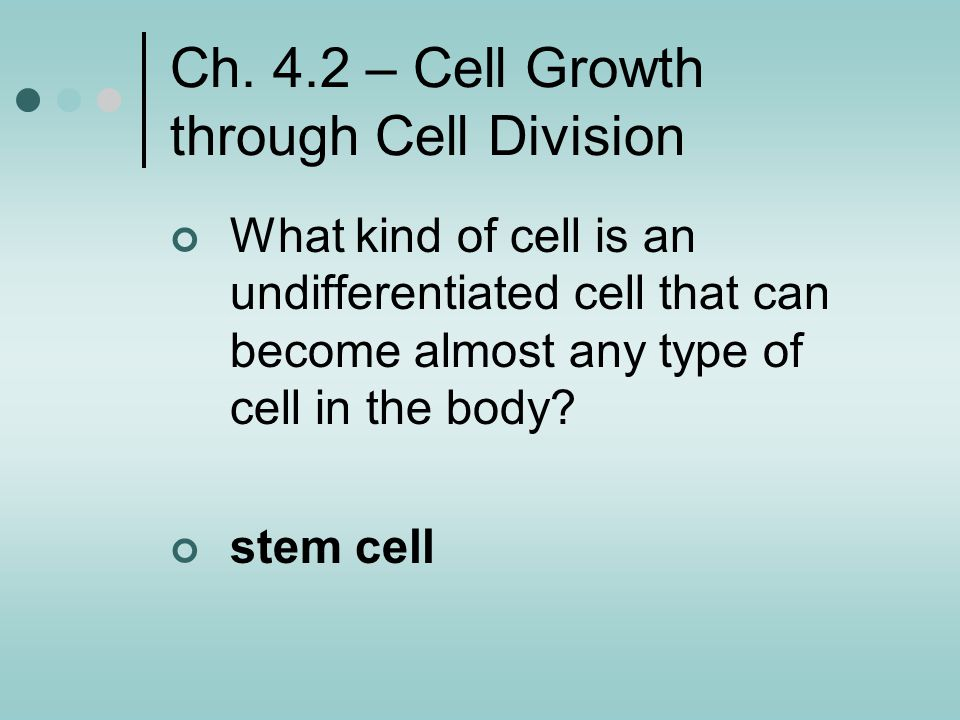 Ch. 4.2 – Cell Growth through Cell Division
