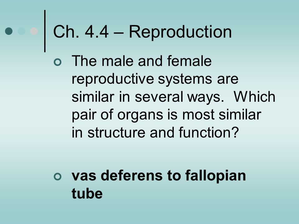Ch. 4.4 – Reproduction