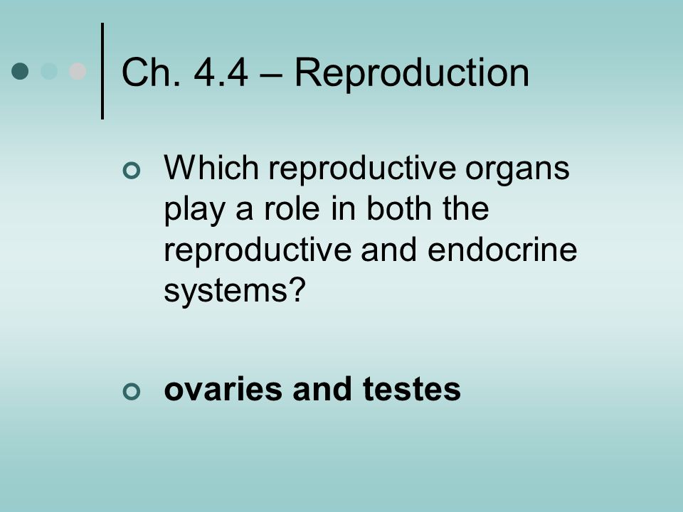 Ch. 4.4 – Reproduction Which reproductive organs play a role in both the reproductive and endocrine systems