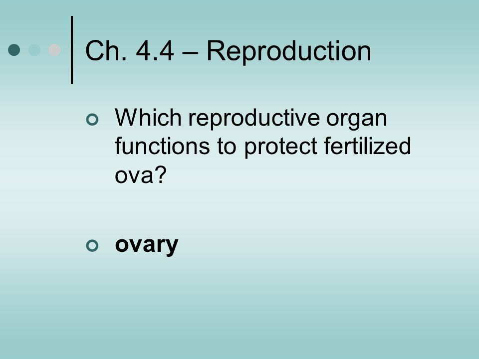Ch. 4.4 – Reproduction Which reproductive organ functions to protect fertilized ova ovary