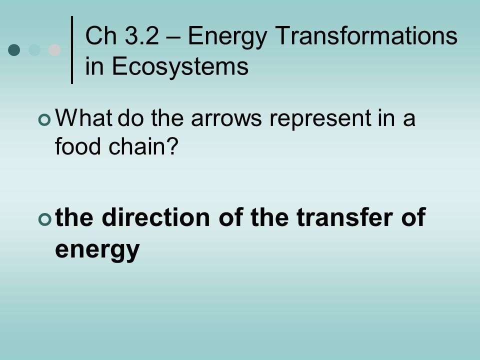 Ch 3.2 – Energy Transformations in Ecosystems