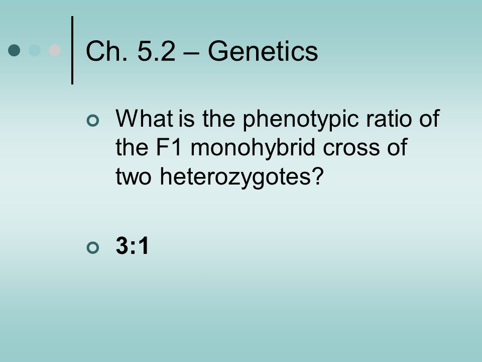 Ch. 5.2 – Genetics What is the phenotypic ratio of the F1 monohybrid cross of two heterozygotes.