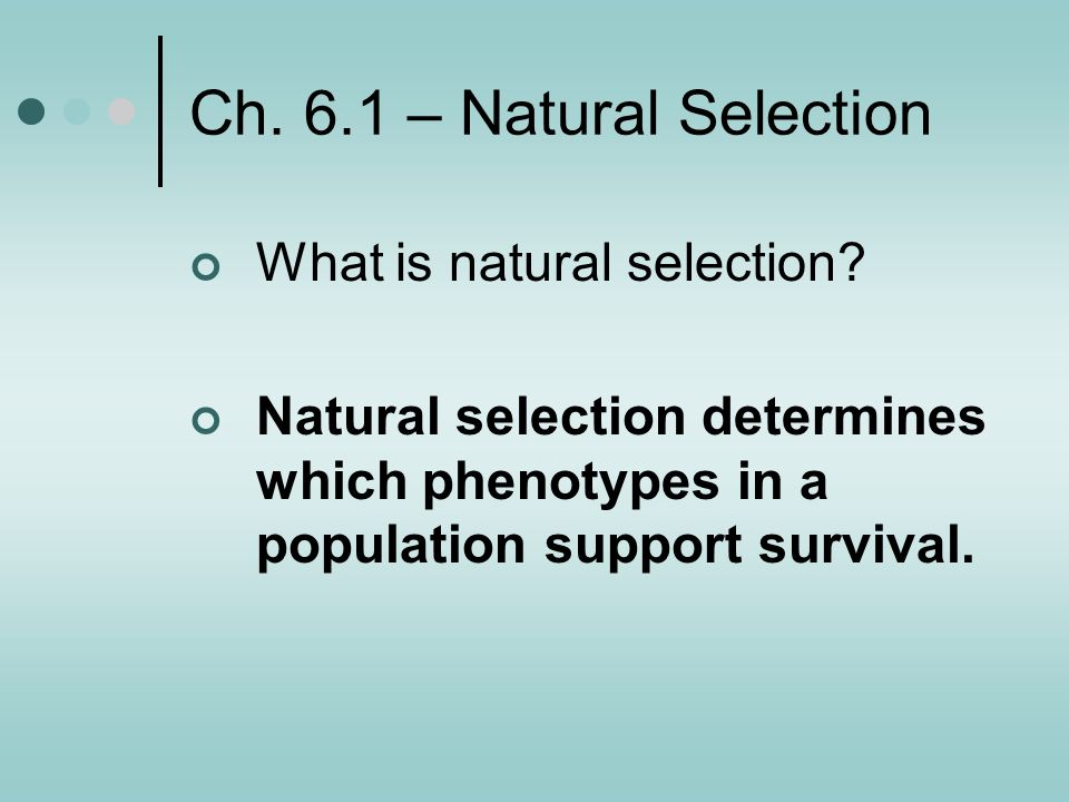 Ch. 6.1 – Natural Selection What is natural selection