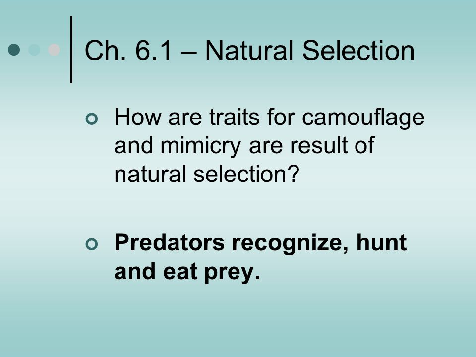 Ch. 6.1 – Natural Selection How are traits for camouflage and mimicry are result of natural selection