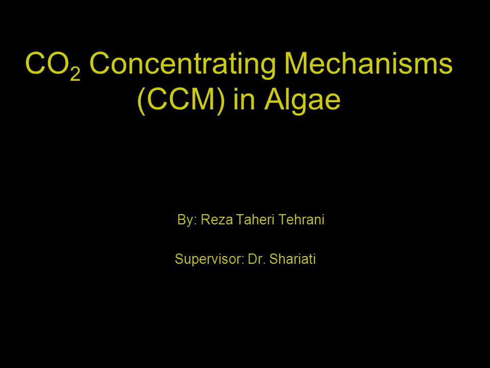 CO2 Concentrating Mechanisms (CCM) in Algae