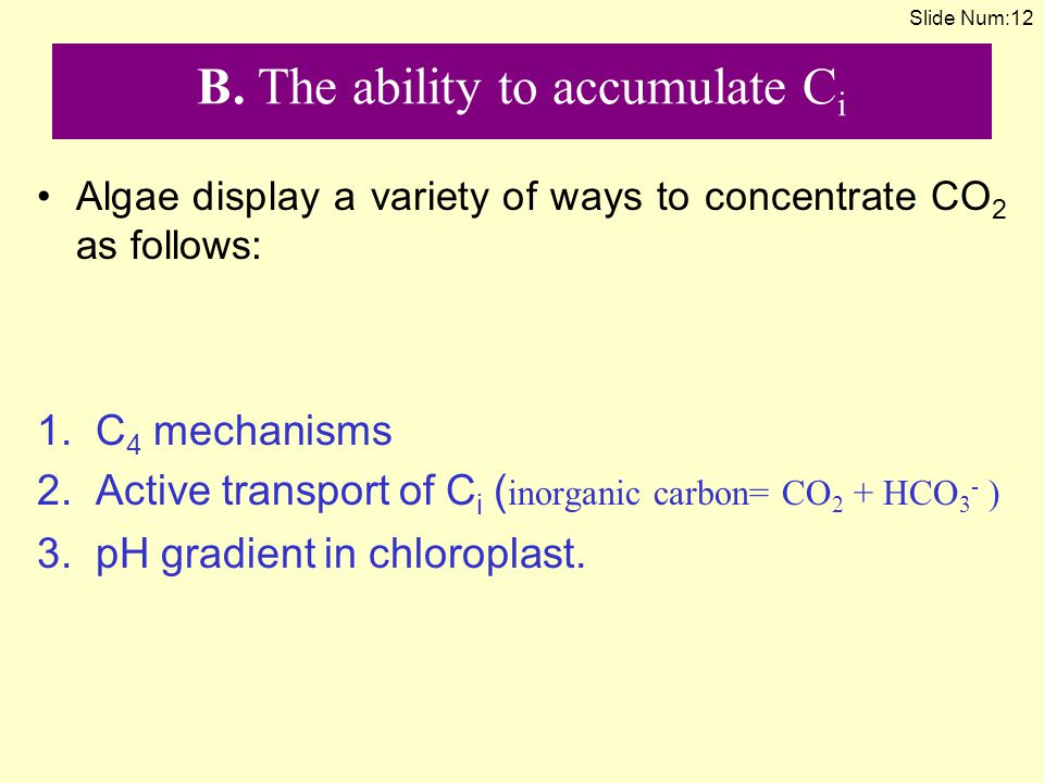B. The ability to accumulate Ci