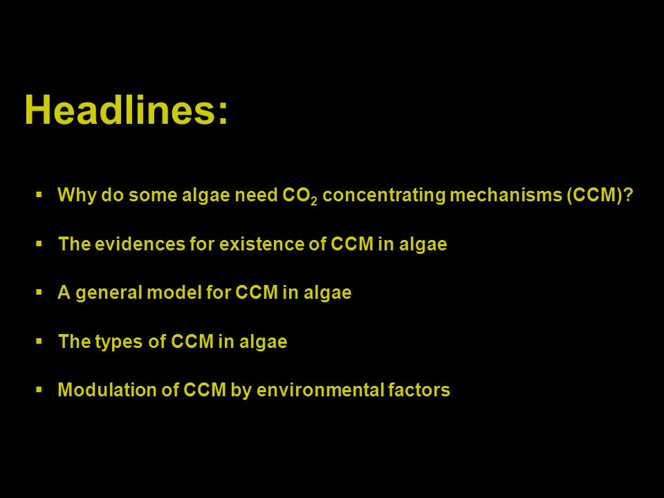 Headlines: Why do some algae need CO2 concentrating mechanisms (CCM)