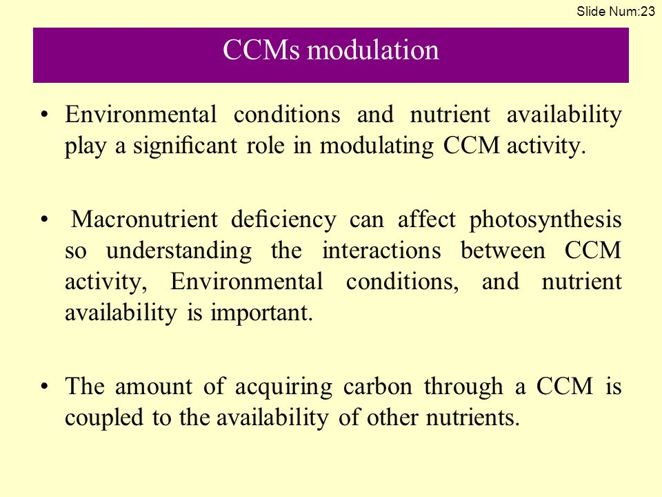 CCMs modulation Environmental conditions and nutrient availability play a significant role in modulating CCM activity.