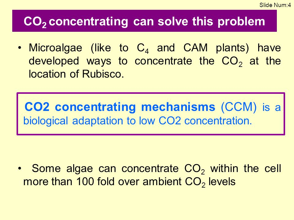 CO2 concentrating can solve this problem