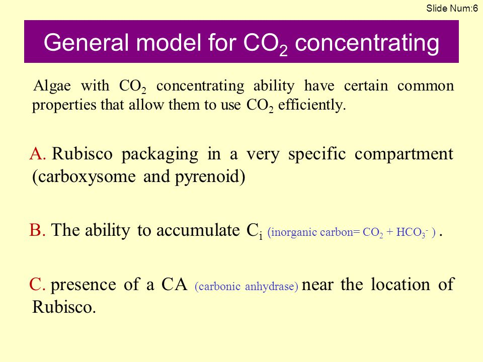 General model for CO2 concentrating