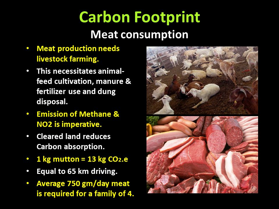 Carbon Footprint Meat consumption