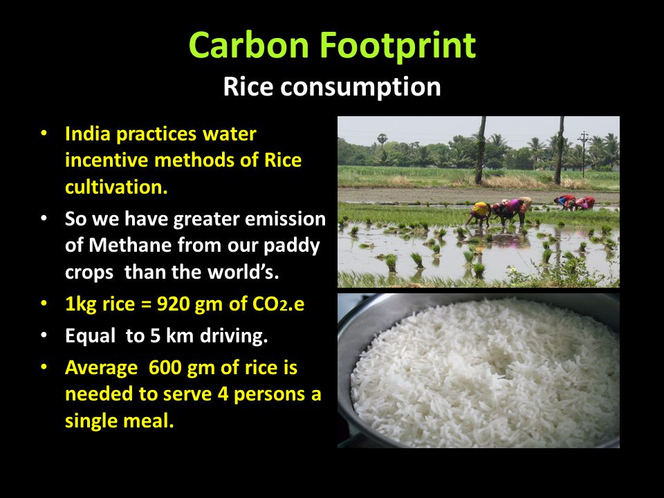 Carbon Footprint Rice consumption