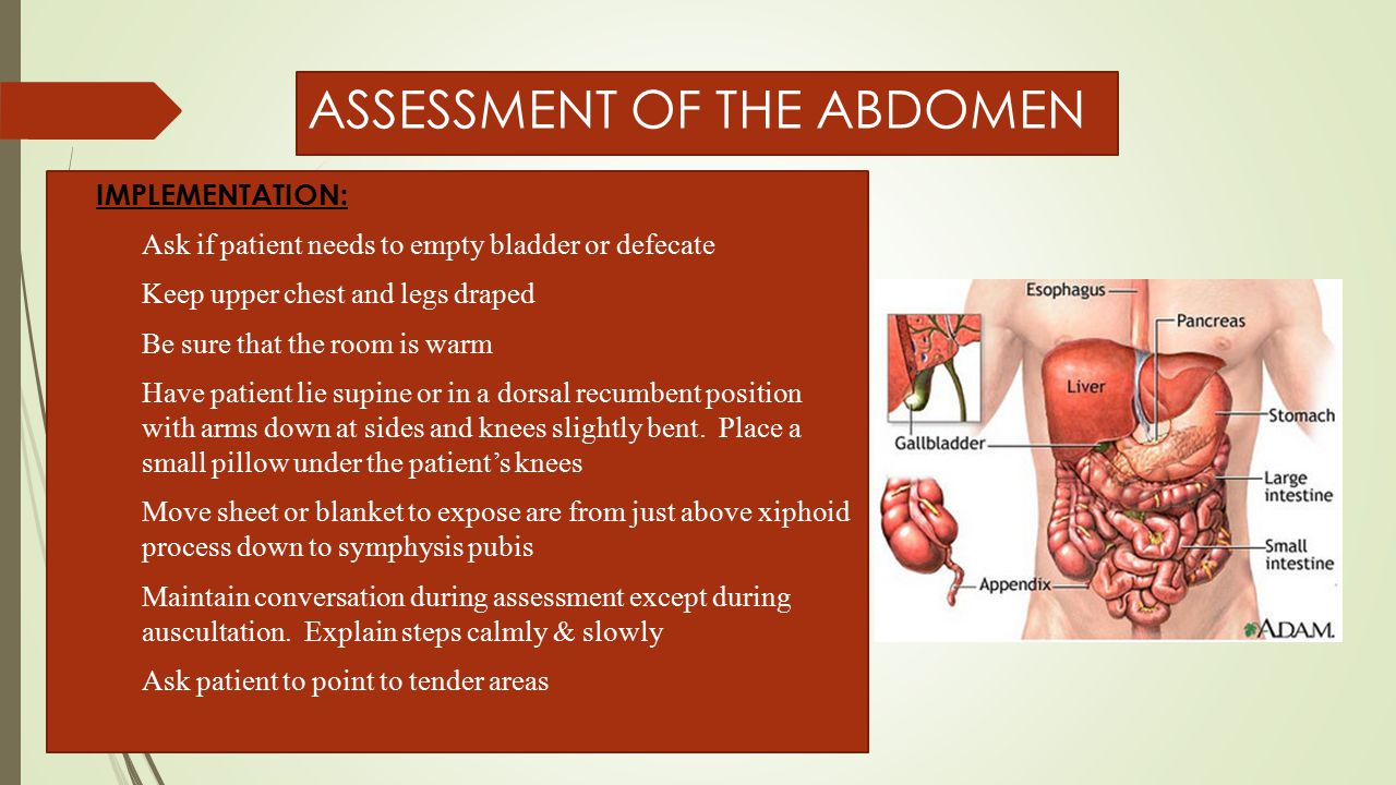 ASSESSMENT OF THE ABDOMEN