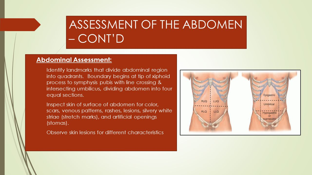 ASSESSMENT OF THE ABDOMEN – CONT'D