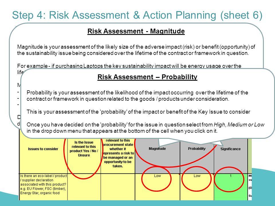 Step 4: Risk Assessment & Action Planning (sheet 6)