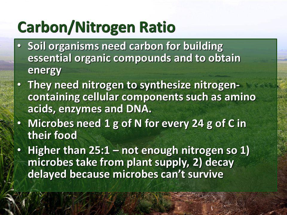 Carbon/Nitrogen Ratio