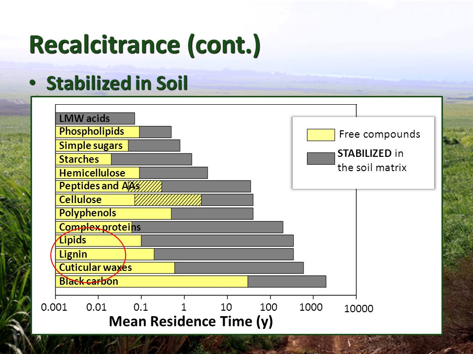 Recalcitrance (cont.) Stabilized in Soil Mean Residence Time (y)