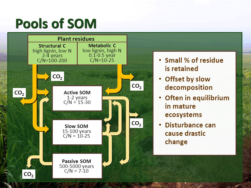 Pools of SOM Small % of residue is retained