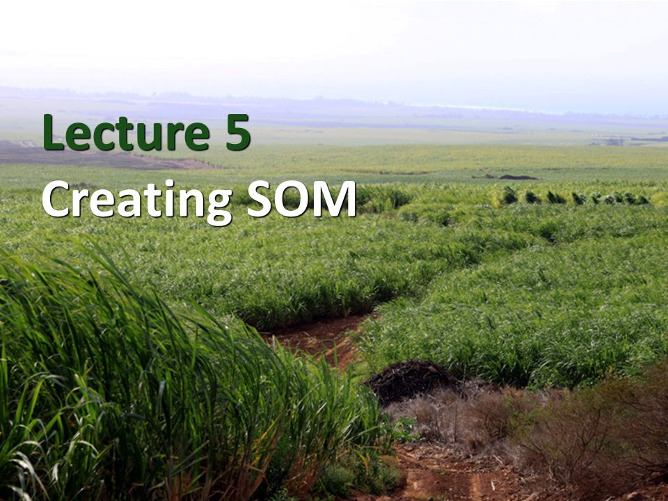 Lecture 5 Creating SOM
