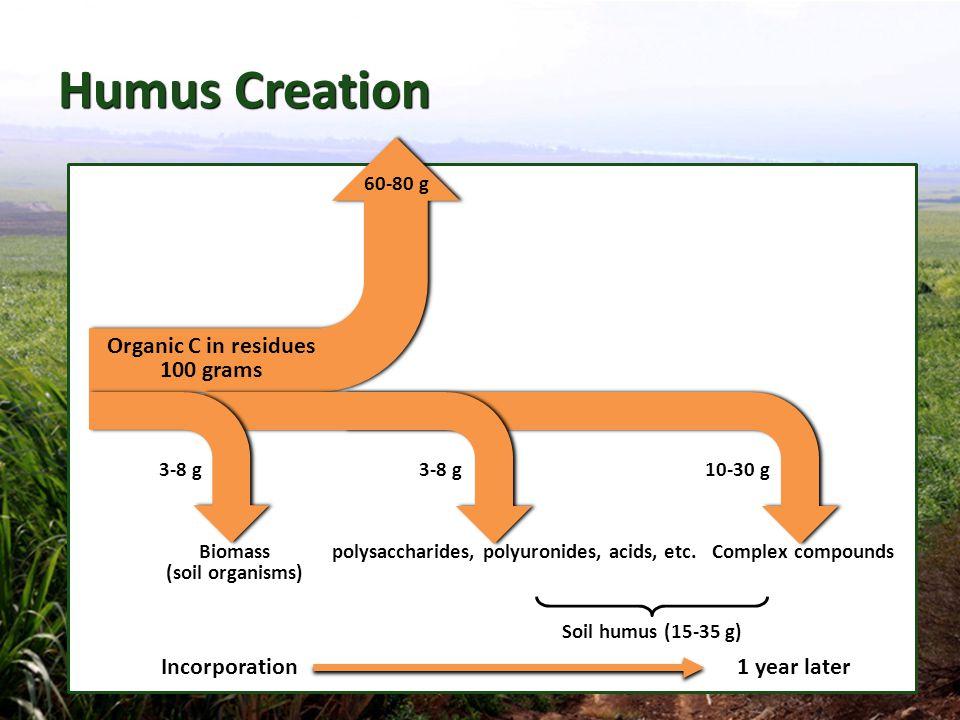 polysaccharides, polyuronides, acids, etc.