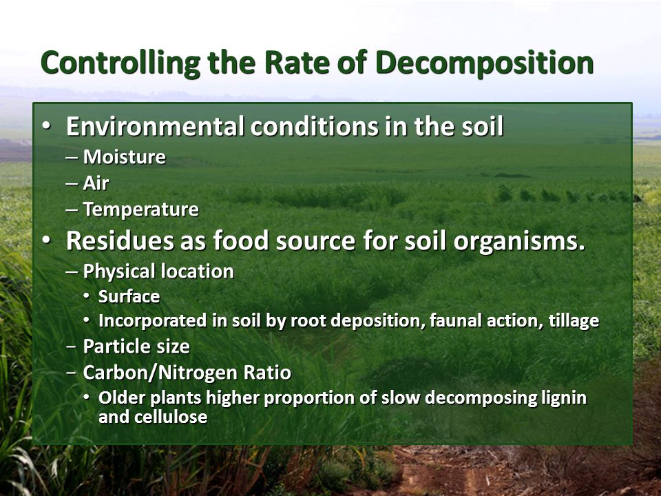 Controlling the Rate of Decomposition