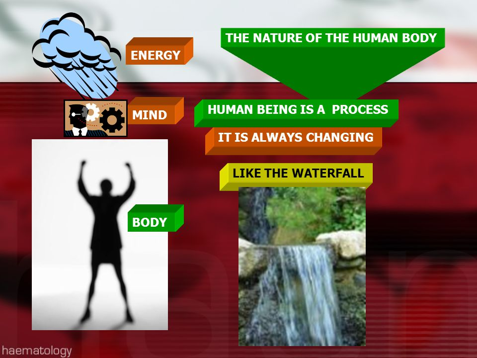 THE NATURE OF THE HUMAN BODY