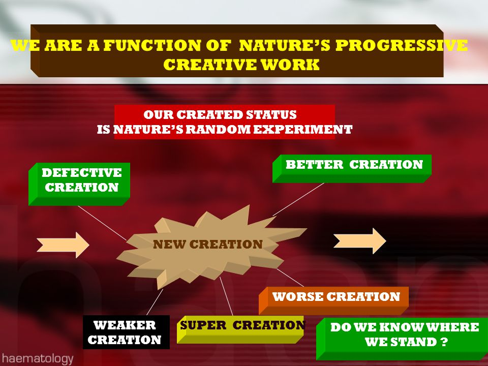 WE ARE A FUNCTION OF NATURE'S PROGRESSIVE CREATIVE WORK