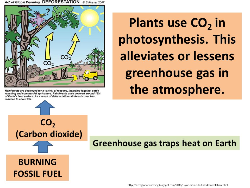 Greenhouse gas traps heat on Earth
