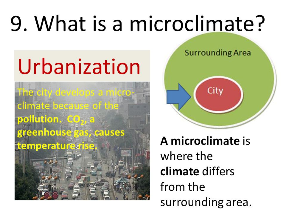 9. What is a microclimate Urbanization
