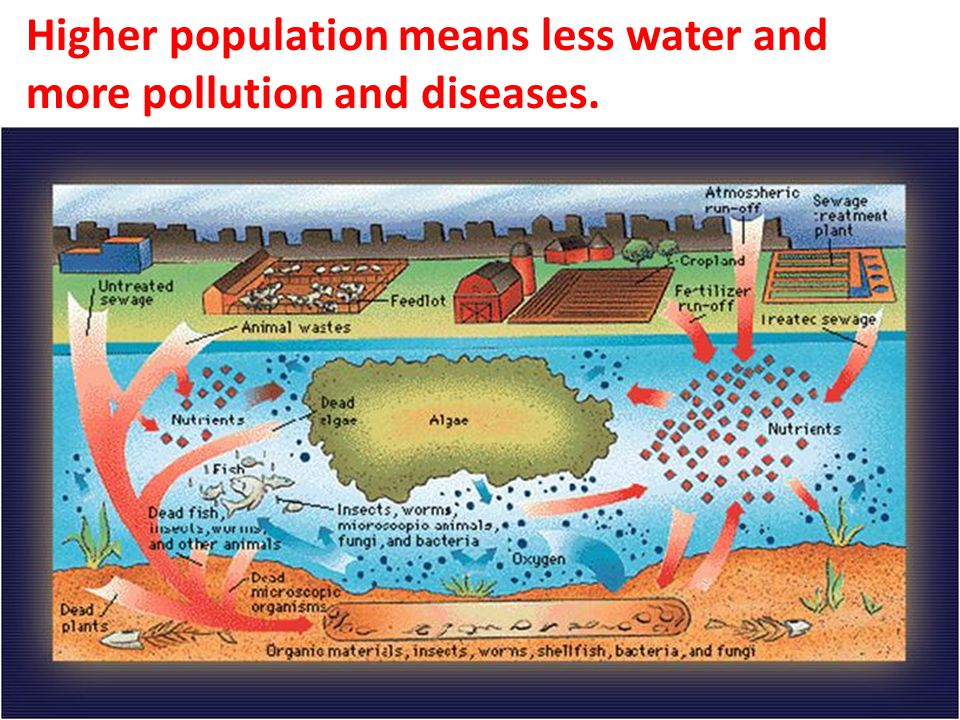 Higher population means less water and more pollution and diseases.