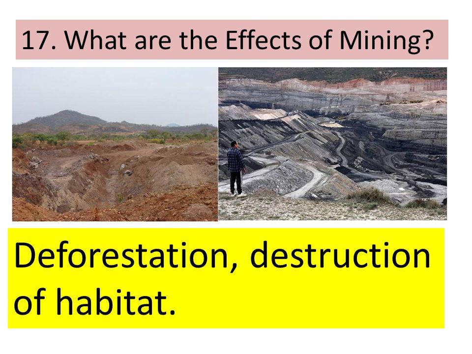Deforestation, destruction of habitat.