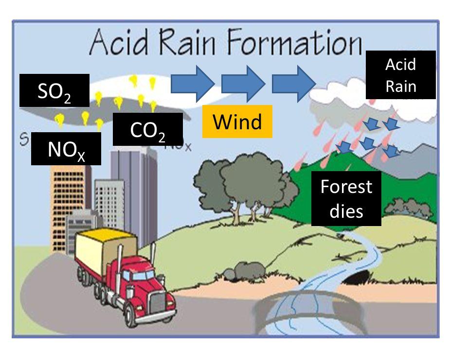 Acid Rain SO2 Wind CO2 NOX Forest dies